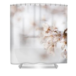 Softly Blossom Shower Curtain by Anne Gilbert