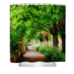 Softly Dreaming Shower Curtain by Marilyn Wilson