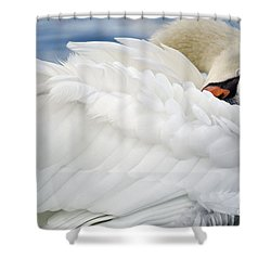 Softly Sleeping Shower Curtain
