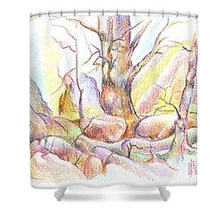 Softly Speaking Shower Curtain by Kip DeVore