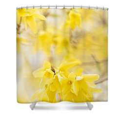 Softly Yellow Shower Curtain by Anne Gilbert