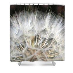 Shower Curtain featuring the photograph Softness Of The World by Ausra Huntington nee Paulauskaite