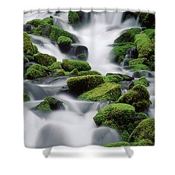 Sol Duc Stream Shower Curtain