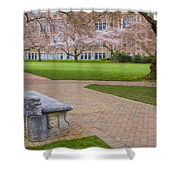Shower Curtain featuring the photograph Solitary Bench by Sonya Lang