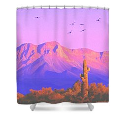 Shower Curtain featuring the painting Solitary Silent Sentinel by Sophia Schmierer