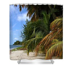 Shower Curtain featuring the photograph Nude Beach by The Art of Alice Terrill