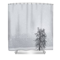 Solitude II Shower Curtain