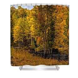Shower Curtain featuring the photograph Solitude by Ken Smith