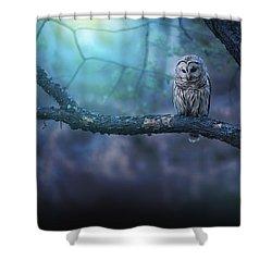 Solitude - Landscape Shower Curtain