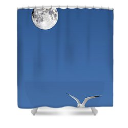 Solitude Shower Curtain by Michael Peychich