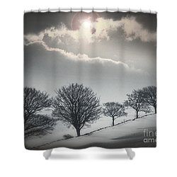 Solitude Of Coldness Shower Curtain