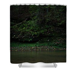 Solitude Shower Curtain by Shane Holsclaw