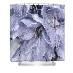Solomons Proverbs Shower Curtain