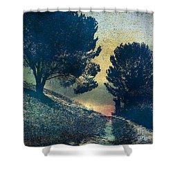 Somber Passage Shower Curtain by Bedros Awak