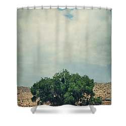 Some Days I Believe Shower Curtain by Laurie Search