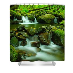 Sometimes Its Best To Sit And Dream Shower Curtain