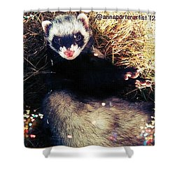 Sometimes We Like To Roll In The Straw #ferrets #pets Shower Curtain