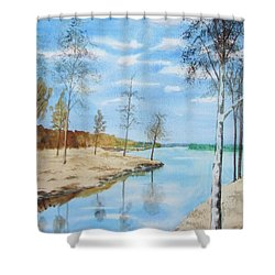Shower Curtain featuring the painting Somewhere In Dalarna by Martin Howard