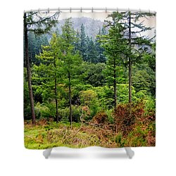 Somewhere In The Forest Over Upper Lake. Glendalough. Ireland Shower Curtain by Jenny Rainbow
