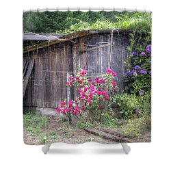 Somewhere Near Geyserville Ca Shower Curtain by Joan Carroll
