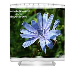 Song Of Solomon 4 Verse 7 Shower Curtain by Sara  Raber