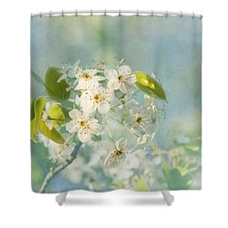 Song Of Spring Shower Curtain by Kim Hojnacki