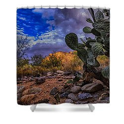 Sonoran Desert 54 Shower Curtain