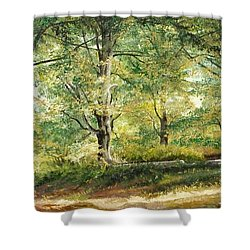 Shower Curtain featuring the painting Sorica Mountain by Sorin Apostolescu