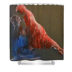 Soul 2 Shower Curtain by Jane See