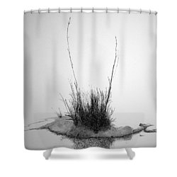 Soul Etude Shower Curtain by A  Robert Malcom