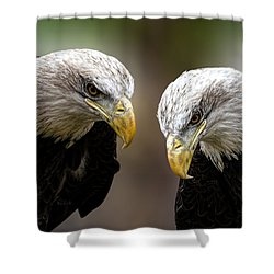 Soul Mates Shower Curtain by Bob Orsillo