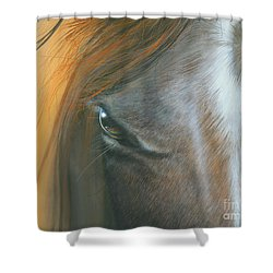 Shower Curtain featuring the painting Soul Within by Mike Brown