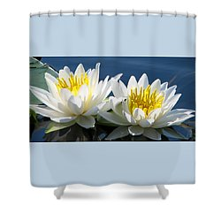 Shower Curtain featuring the photograph Soulmates by Angela Davies