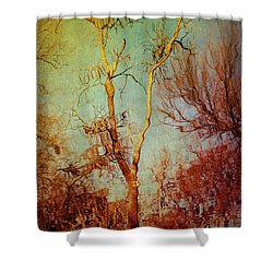 Souls Of Trees Shower Curtain by Trish Mistric
