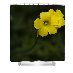 Sour Grass Shower Curtain