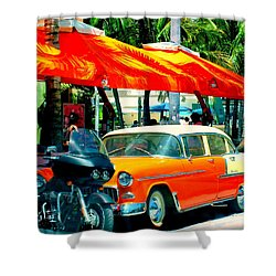 South Beach Flavour Shower Curtain by Karen Wiles