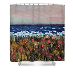 Shower Curtain featuring the painting South Cape Beach Sunset by Michael Helfen