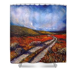 Southern California Road Shower Curtain