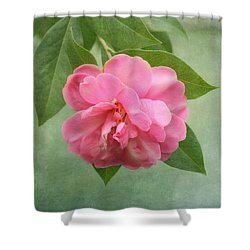 Southern Camellia Flower Shower Curtain