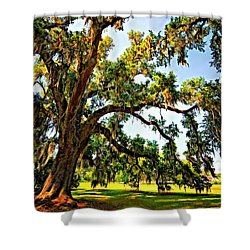 Southern Comfort Painted Shower Curtain by Steve Harrington