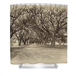 Southern Journey Sepia Shower Curtain by Steve Harrington