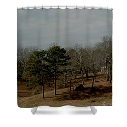 Shower Curtain featuring the photograph Southern Landscape by Lesa Fine