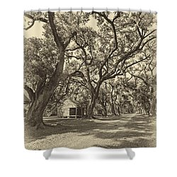 Southern Lane Sepia Shower Curtain by Steve Harrington