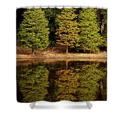 Southern Reflections Shower Curtain by Phill Doherty