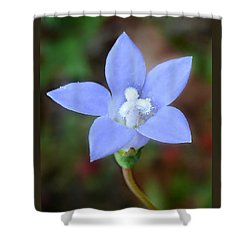 Shower Curtain featuring the photograph Wild Southern Rockbell  by William Tanneberger