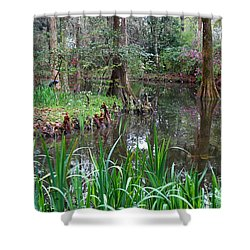 Southern Serenity Shower Curtain by Carol Groenen