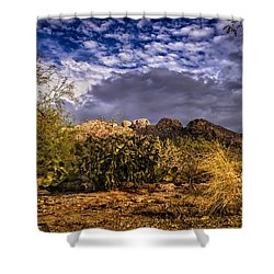 Shower Curtain featuring the photograph Southwest Salad No.2 by Mark Myhaver