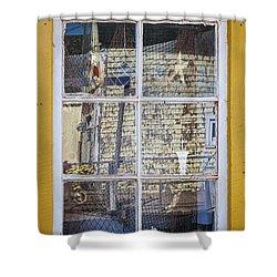 Souvenir Store Window Shower Curtain by Elena Elisseeva
