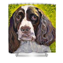 Spaniel The Eyes Have It Shower Curtain