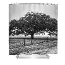 Spanish Oak Black And White Shower Curtain